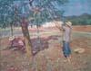 cuadro-chico-prats-ibiza-payes-recogiendo-olivas